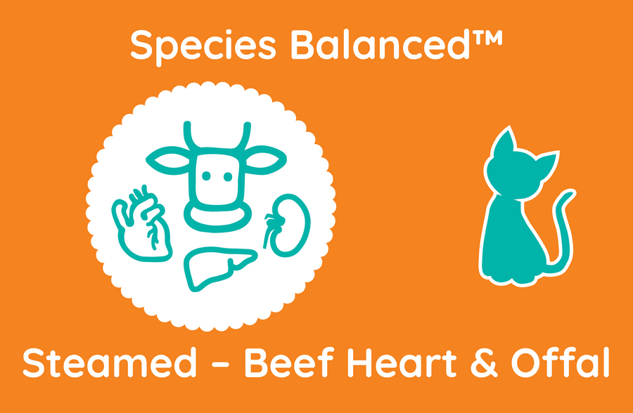 Species Balanced™ Steamed Beef Heart & Offal for Cats