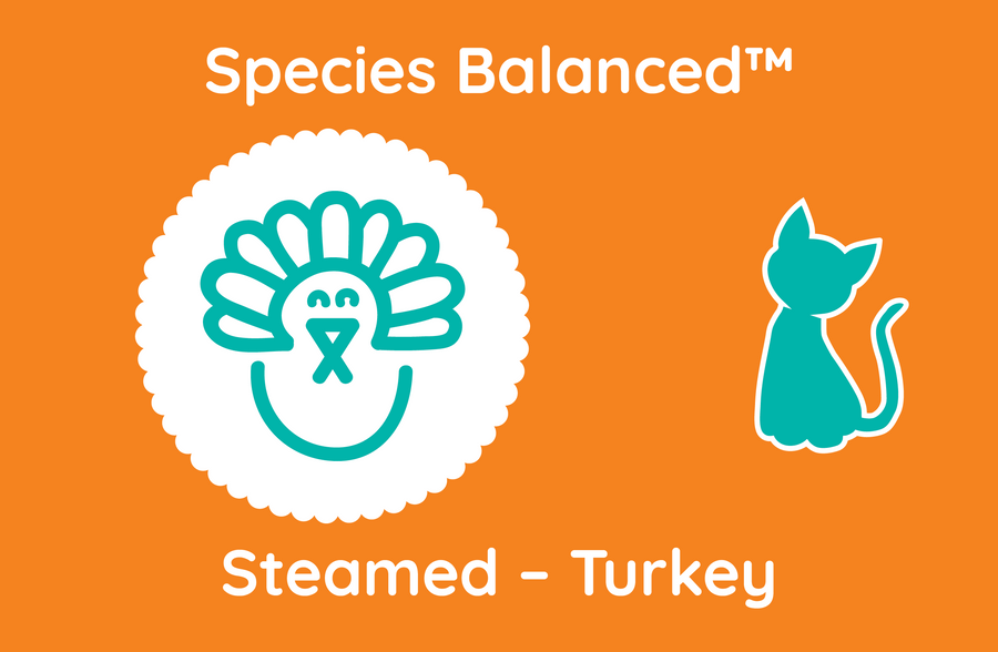 Species Balanced™ Steamed Turkey for Cats (PP2019)