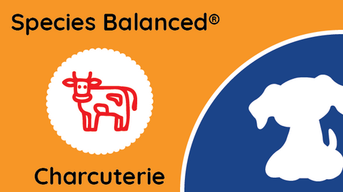 Species Balanced® Charcuterie Beef Terrine for Dogs