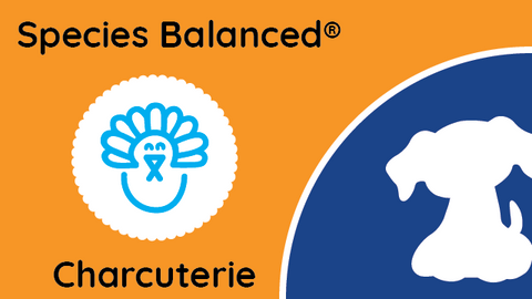 Species Balanced® Charcuterie Turkey Terrine for Dogs