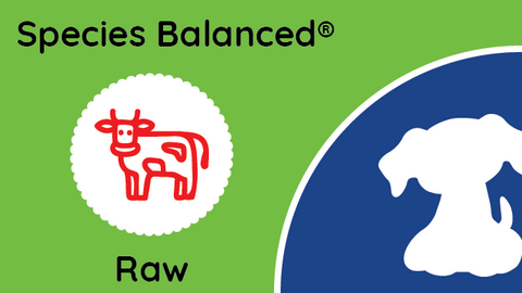 Species Balanced® Raw Beef Dinner for Dogs