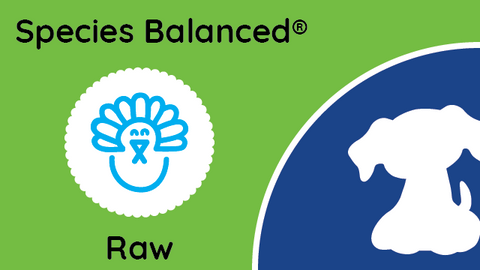 Species Balanced® Raw Turkey Dinner for Dogs