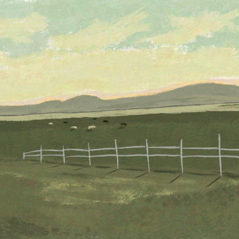 Cattle Grazing Fine Art Print