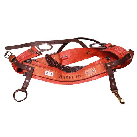 Bashlin - 2D Ring Tree Saddle