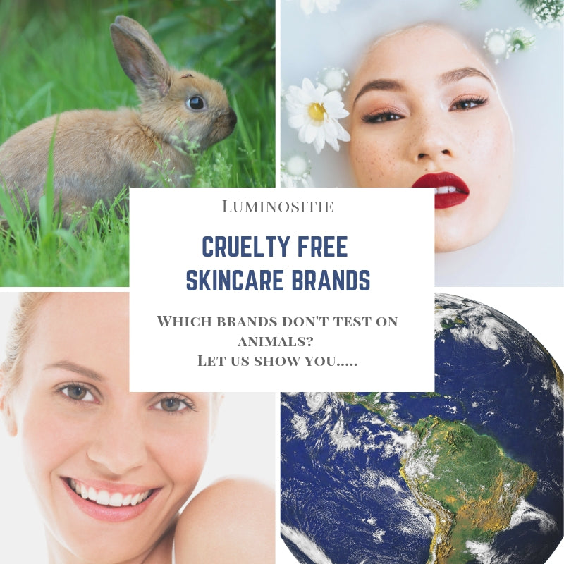 Which Skincare Brands are Cruelty Free? - A Definitive Breakdown