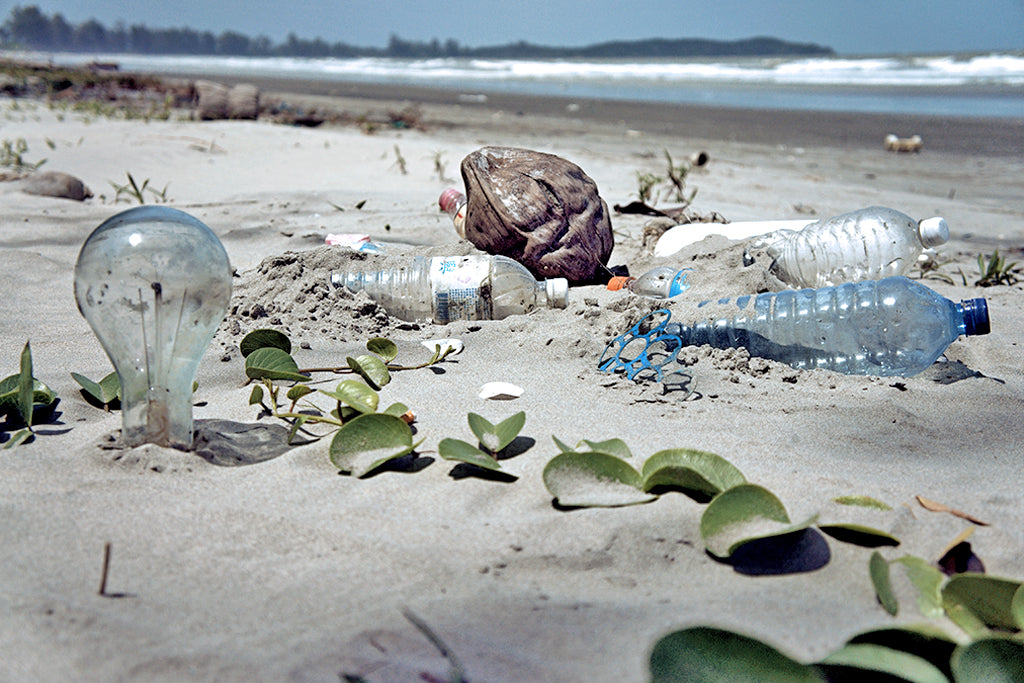 environmental impact of plastic water bottles