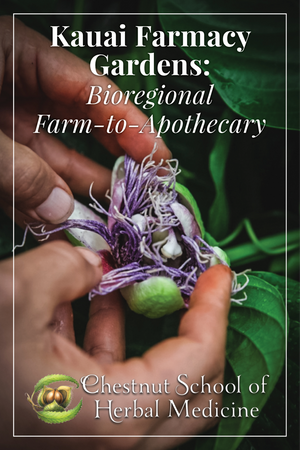 Kauai Farmacy Gardens: Bioregional Farm-to-Apothecary