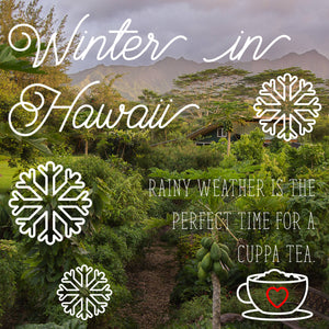 Winter in Hawaii. Rainy weather is the perfect time for a cuppa tea.