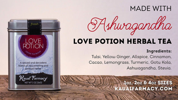 Love Potion made with Ashwagandha at Kauai Farmacy. Herbal tea with tulsi, yellow ginger, allspice, cinnamon, cacao, lemongrass, turmeric, gotu kola, ashwagandha, stevie.