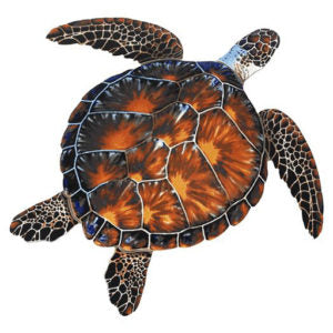 Brown Turtle Porcelain Mosaics