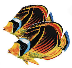 Raccoon Butterflyfish (Double) Porcelain Mosaic
