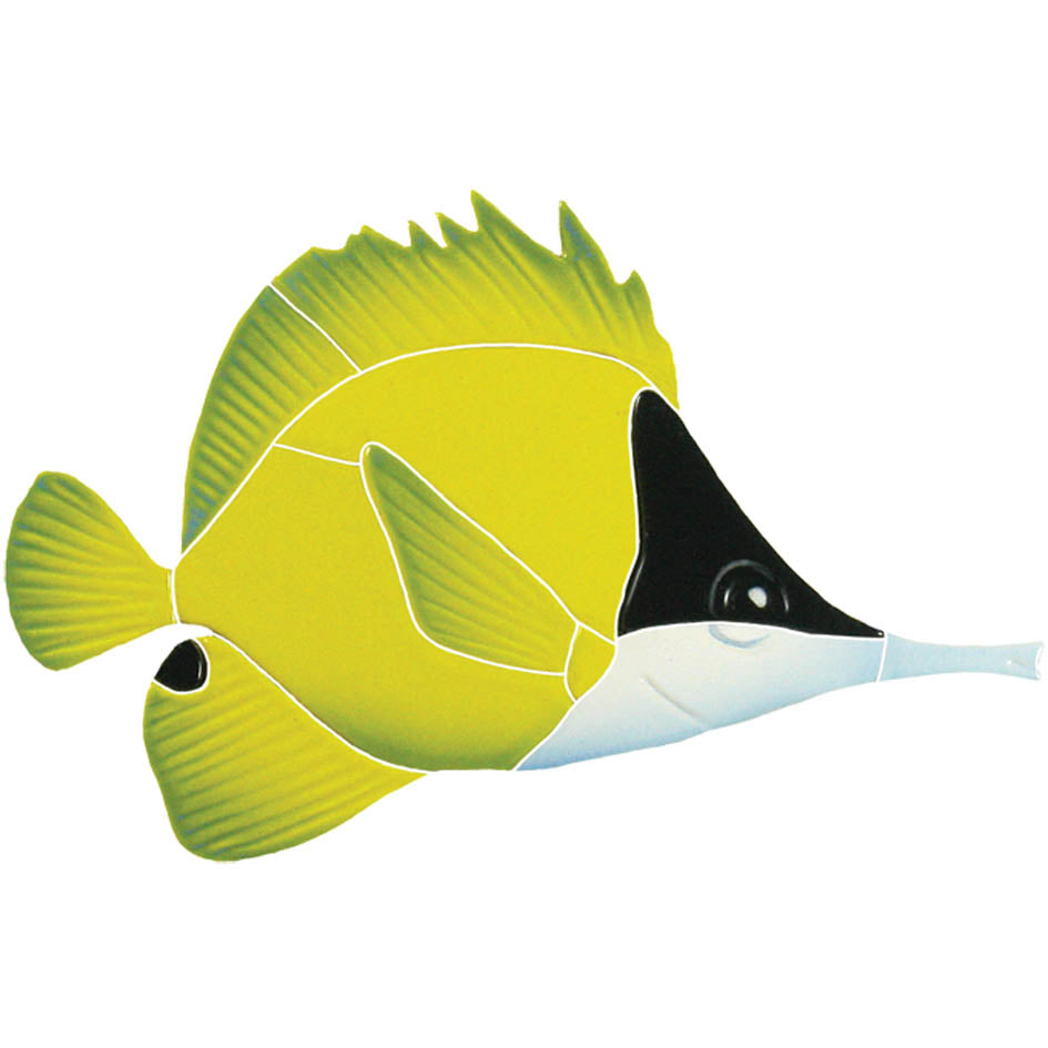 Long Nosed Butterfly Fish