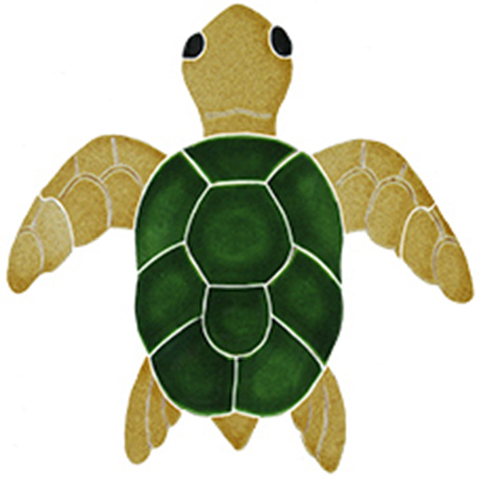 Classic Turtle Topview Natural<BR> Click to View Different Sizes