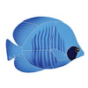 Tiger Tang Fish<BR>Yellow - Orange - Blue<BR>Click to View