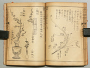 Ikebana hitorigeiko Vol.1-2 (in one volumes) / BJ162-869