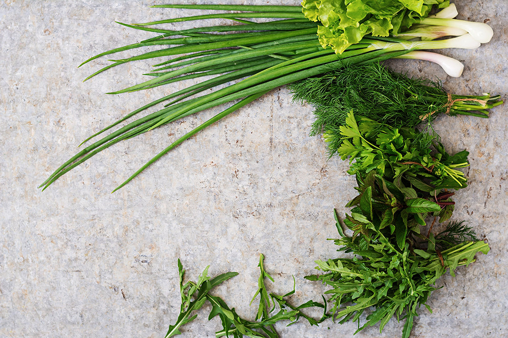 How To Correctly Store Fresh Herbs