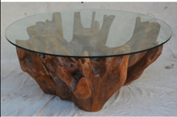 Natural Teak Root Coffee Table with Glass Top