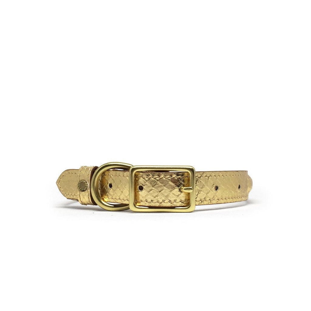 BIBI Collar - Oro (Exclusive)