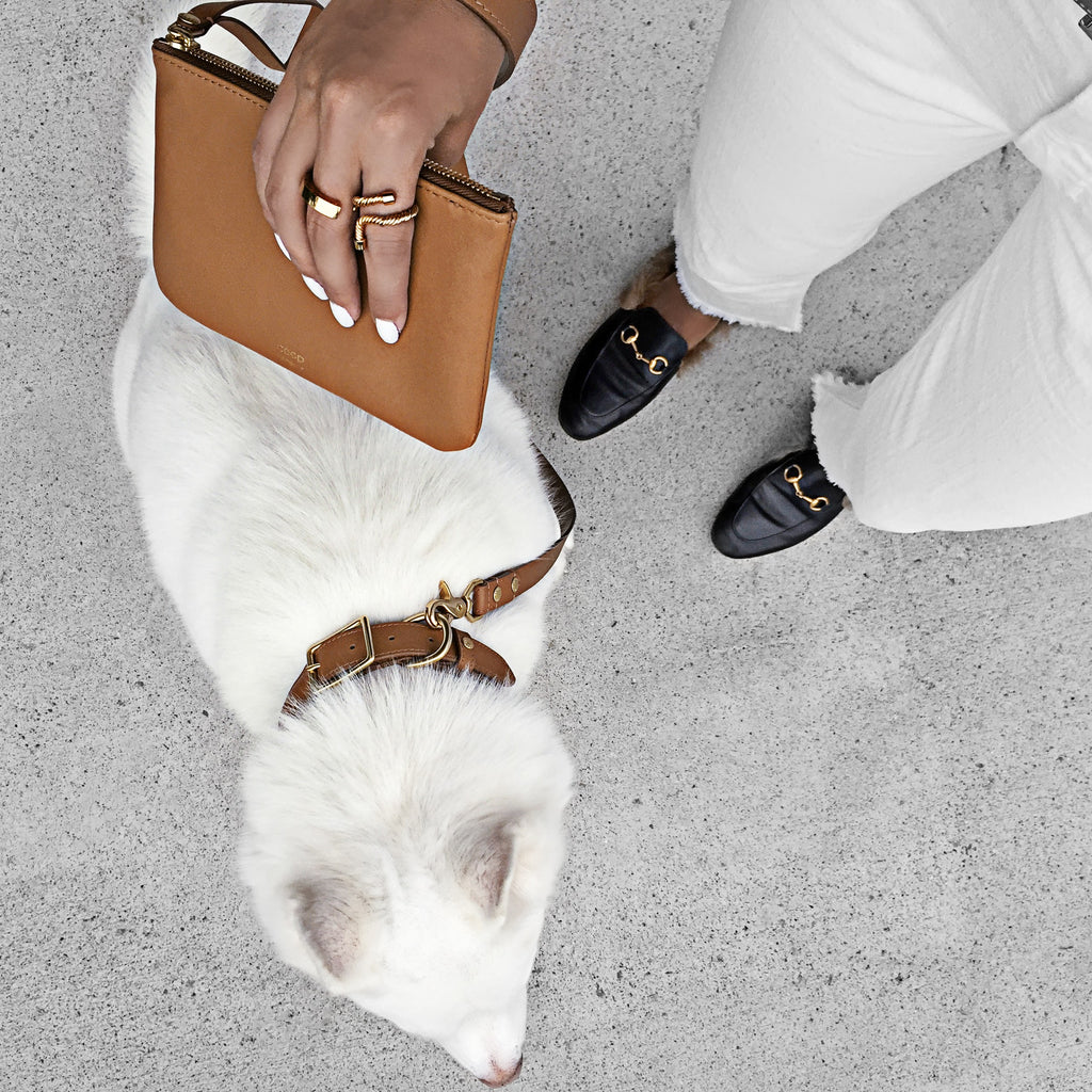 lou lou leather pouch - bibi leather collar - tango leather leash