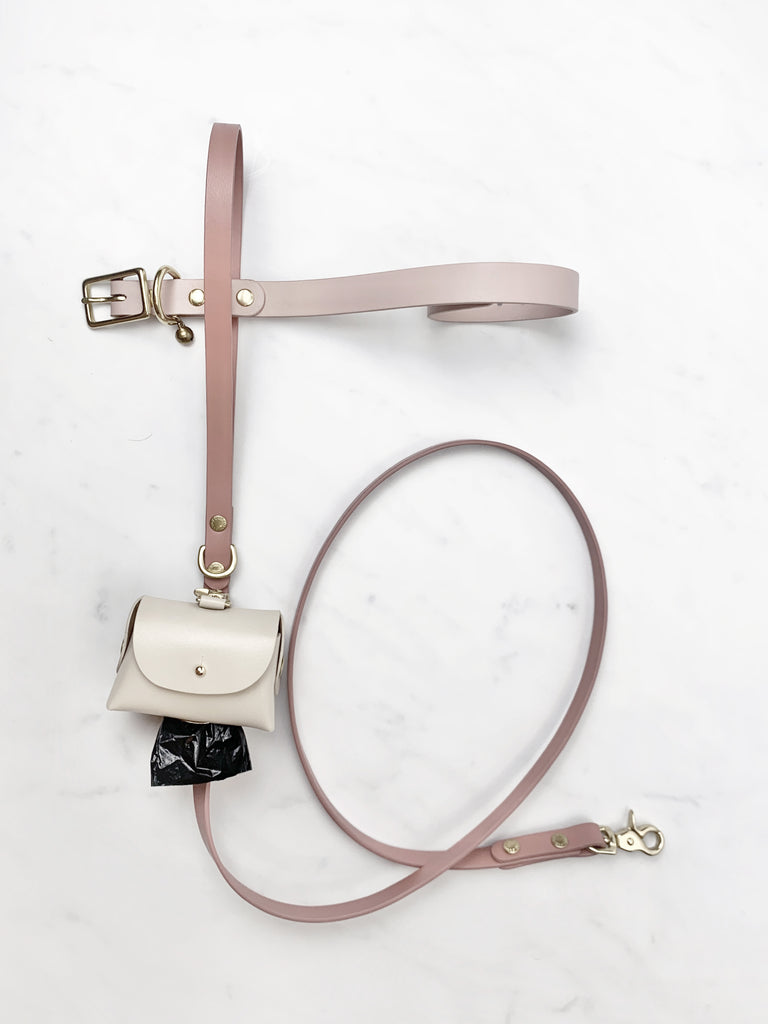 Modern and minimal leather dog leash , dog collar , poopbag pouch