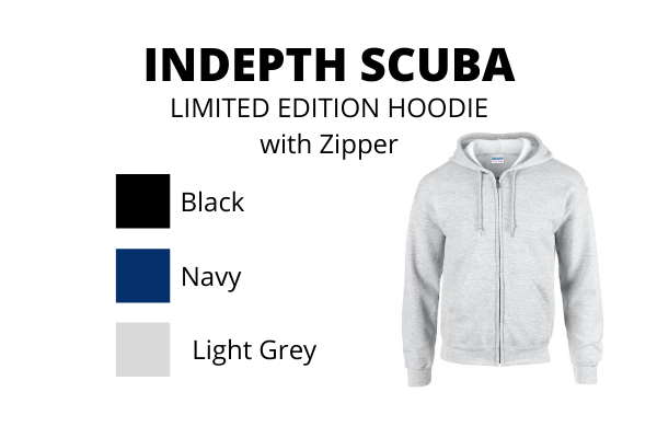 Indepth Limited edition Hoodie 2020 - with Zipper