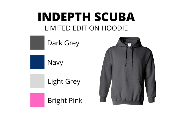 Indepth Limited edition Hoodie 2020 - without Zipper