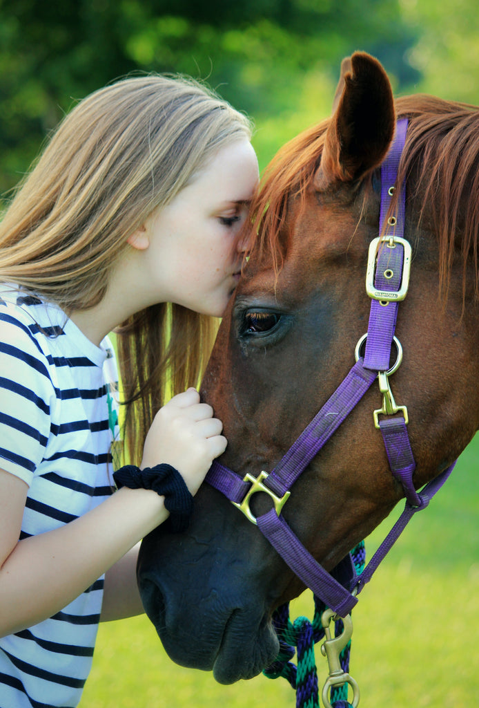 Why do girls love horses so much?