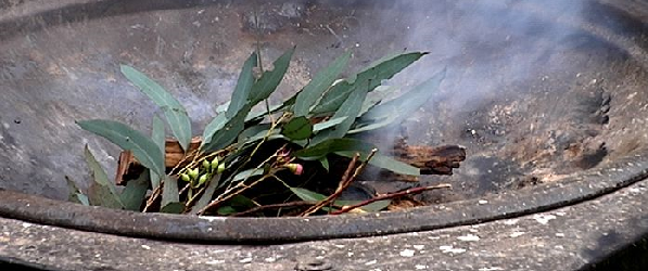 Australia Day Smoking Ceremony, picture of leaves smoking as part of traditional ceremony.