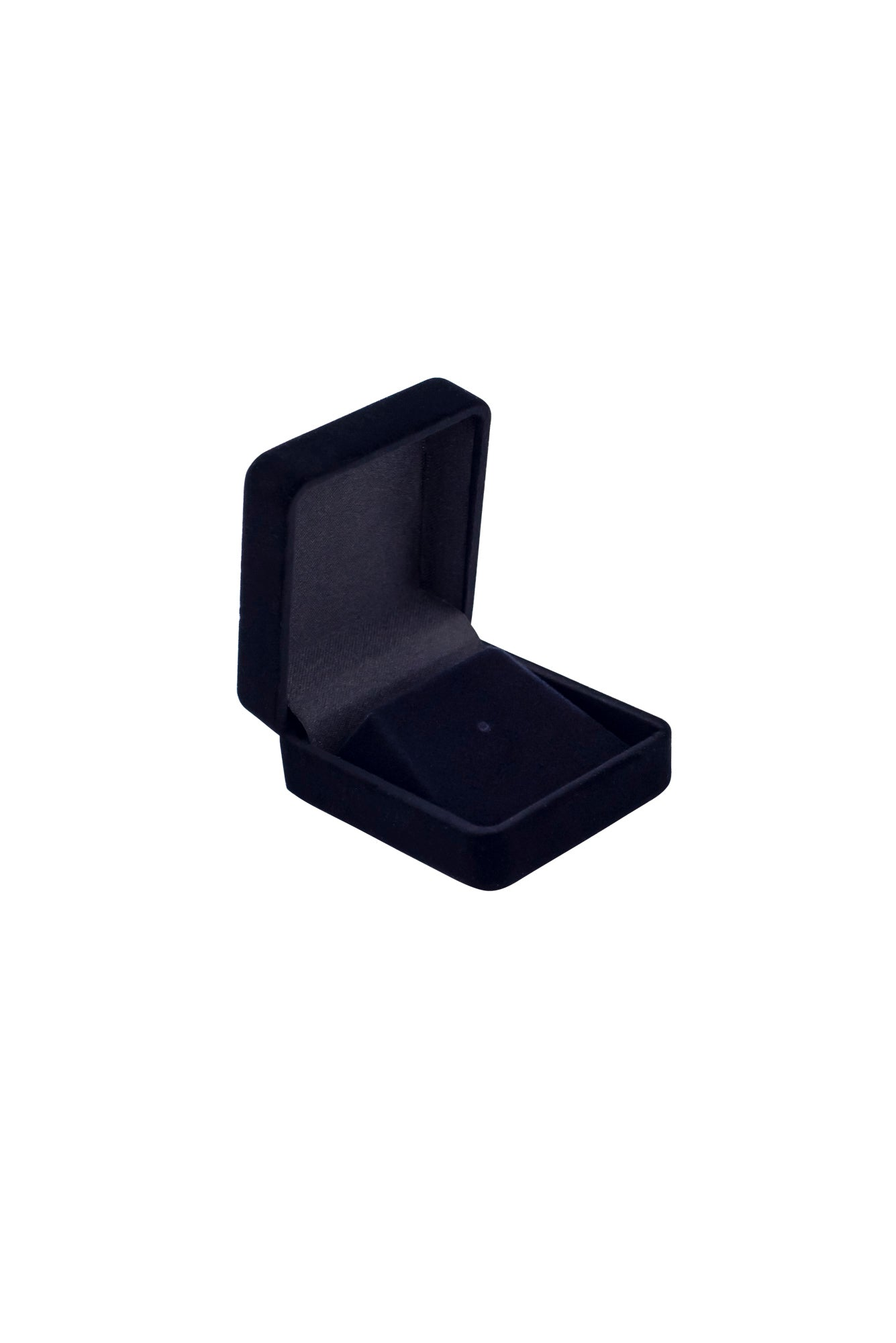Presentation Case - Lapel Pin