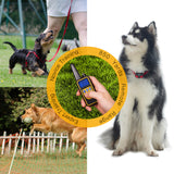 850Yd Remote Training Collar for Dogs