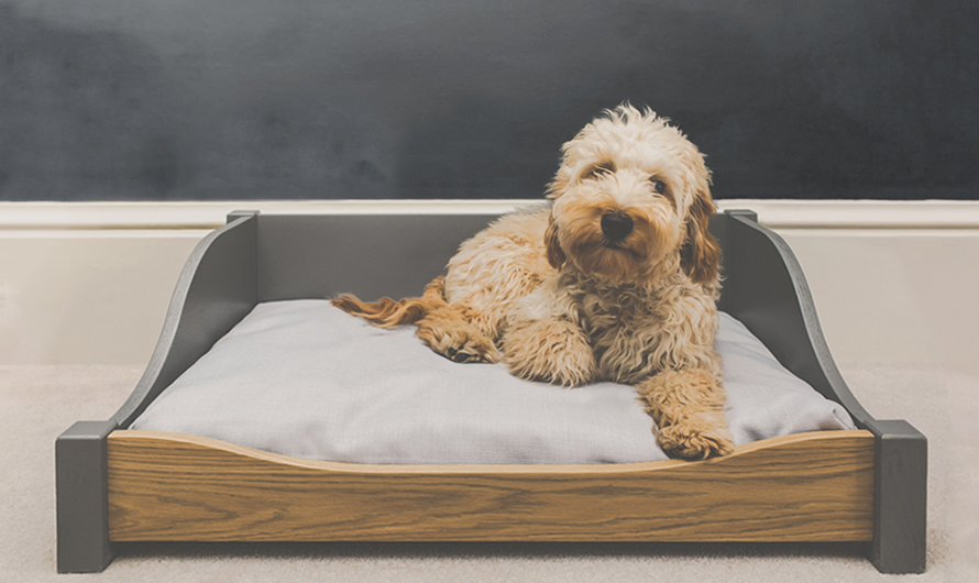 Luxury Wooden Dog Bed Guide