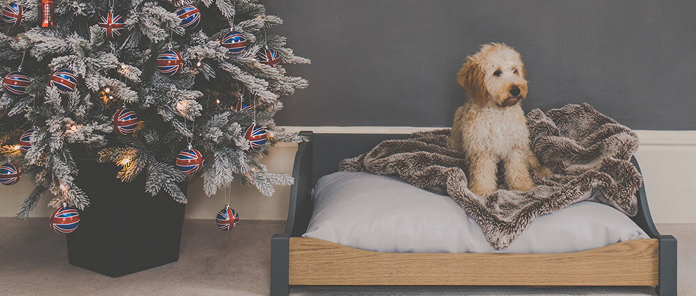 wooden dog bed next to a christmas tree