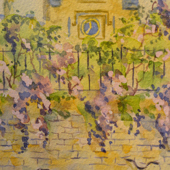 Wisteria at Sidney Sussex College | Nicola Hale | Primavera Gallery