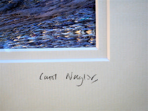 Night Sky | Carol Naylor | Primavera Gallery
