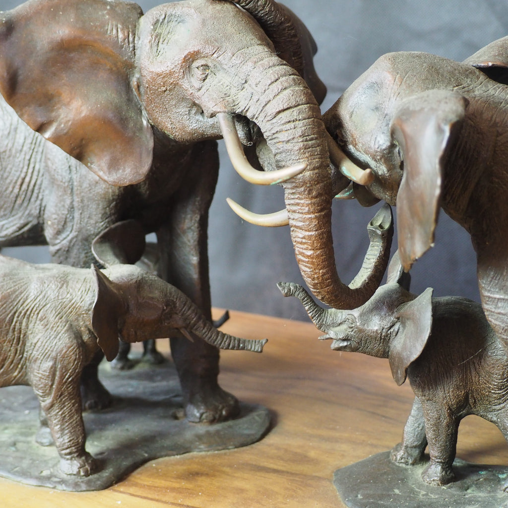 Mathews, Terry – Elephants