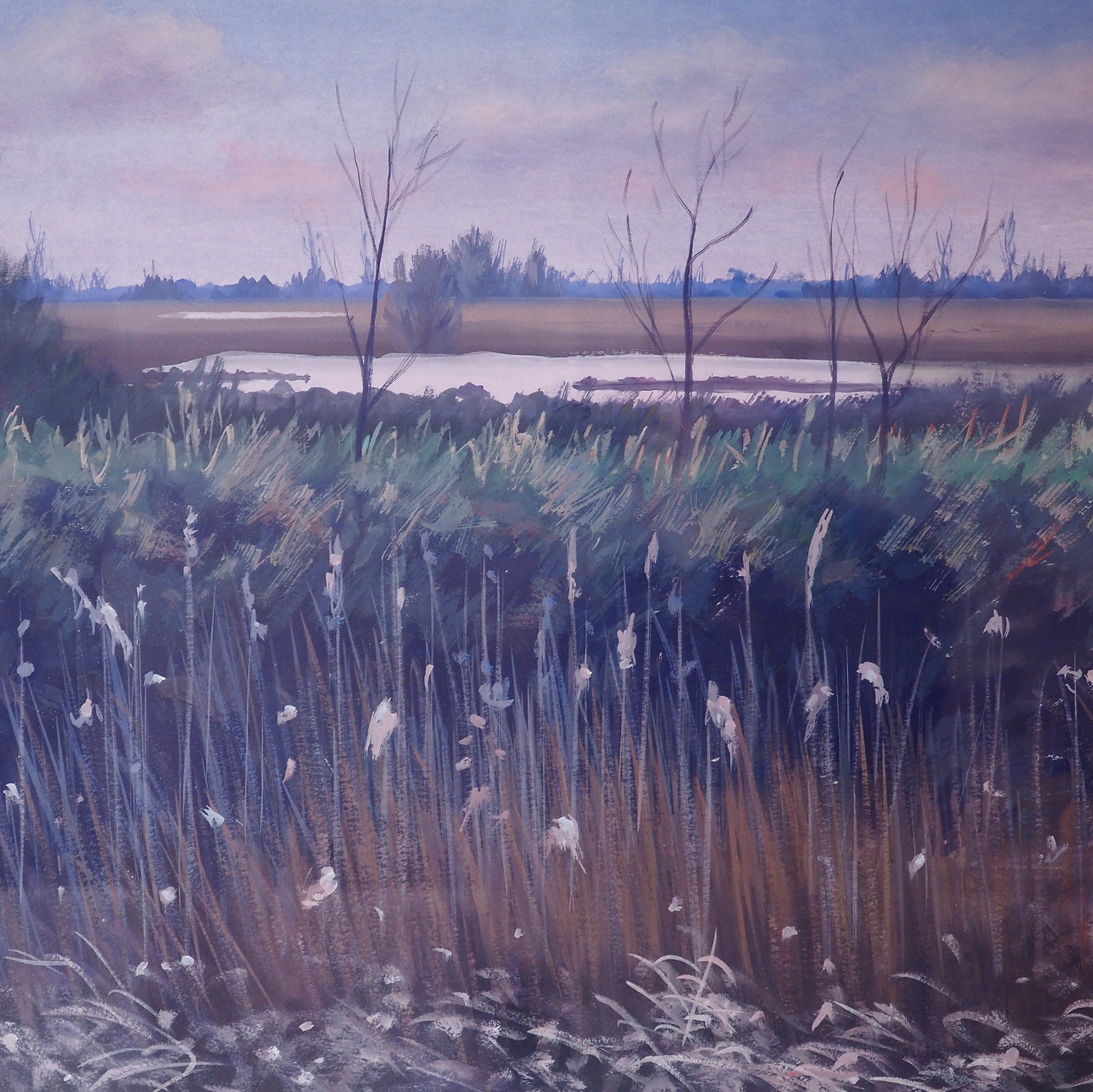 Day, Anthony - 'Winter Wetland' | Anthony Day | Primavera Gallery
