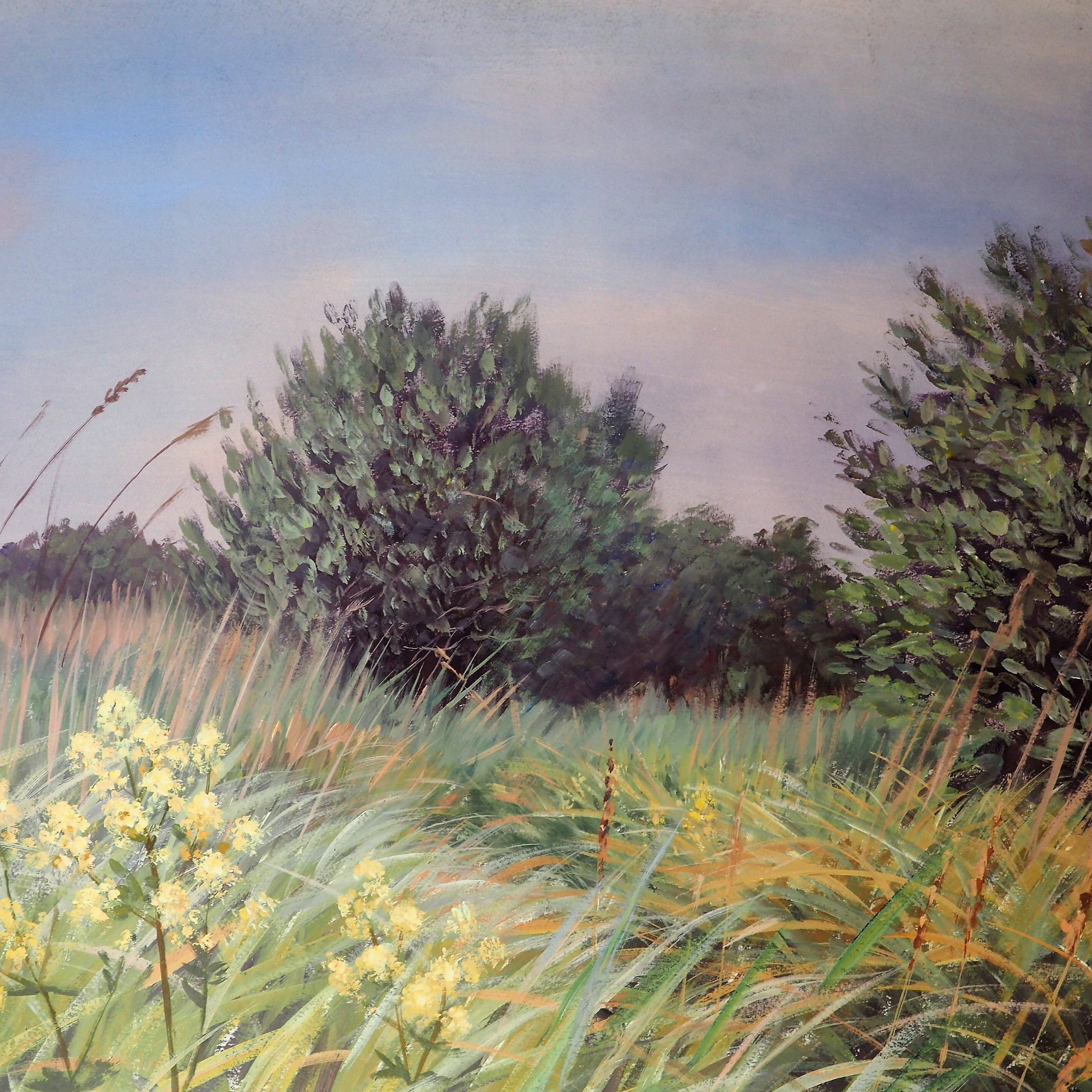 Day, Anthony - 'Fen Walk In June' | Anthony Day | Primavera Gallery