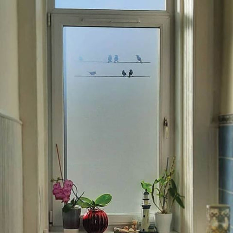 A window decorated with frosted glass-effect window film with a design of birds sitting on telegraph wires