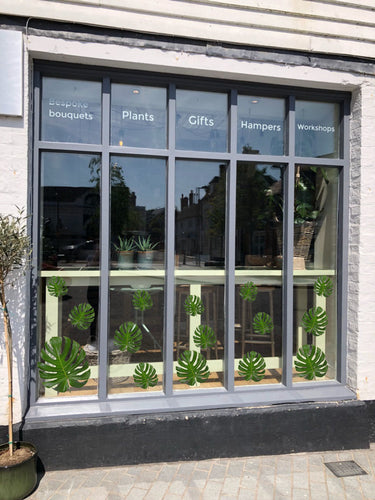 Set of 18 Monstera Leaves Retail Window Graphics