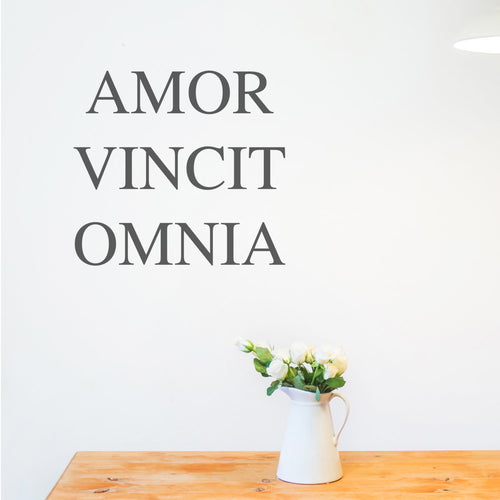 Wall Sticker Quotes Latin