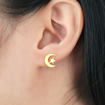 Moon & Stars Stainless Steel IP Gold Plated Stud Earrings