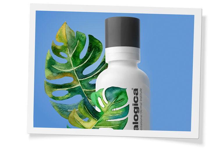 phyto replenishing oil-image-grid