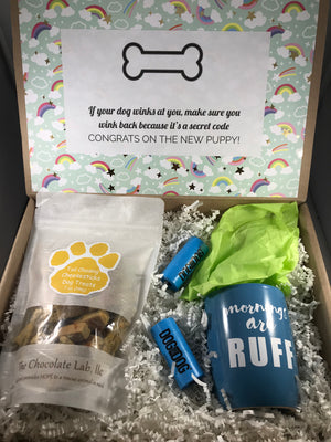 Dog Gift Box by Salazar Lane