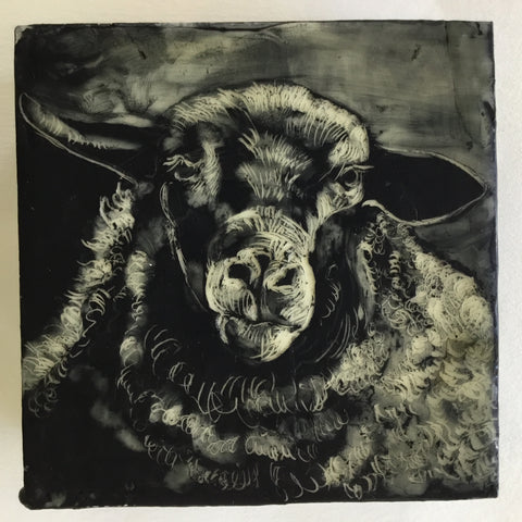 Sheep Portrait #3