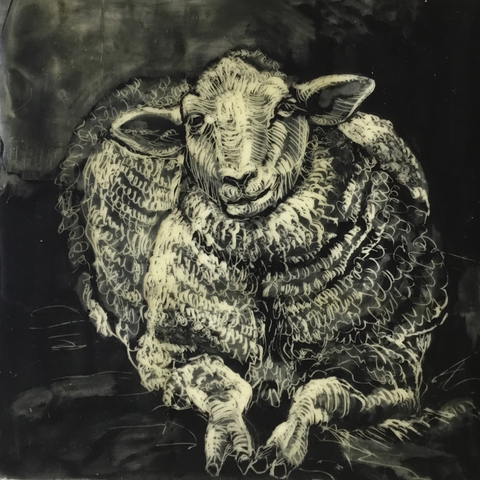 Sheep Portrait #1