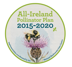 All Ireland Pollinator plan supported by Lottie doll