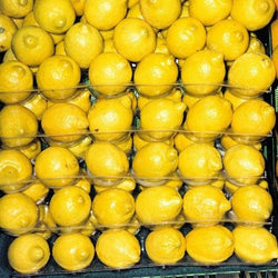28 Pockets for Lemons and Limes