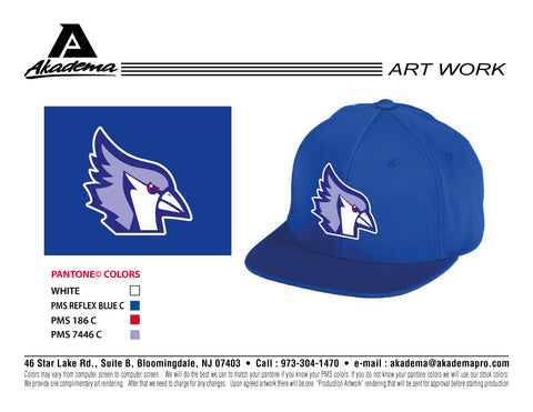 Texas Blue Jays Hat