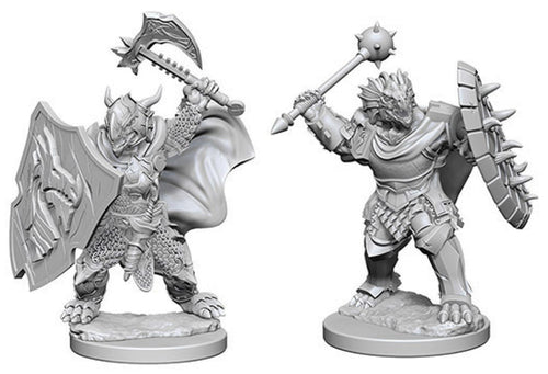 Dungeons & Dragons Nolzur`s Marvelous Unpainted Miniatures: W4 Dragonborn Male Paladin