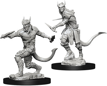 Dungeons & Dragons Nolzur`s Marvelous Unpainted Miniatures: W5 Tiefling Male Rogue